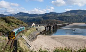 dovey-train